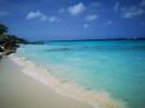 Twizy-Tours Bonaire_10