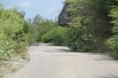 Twizy Tours Roadrunner-Bonaire_3