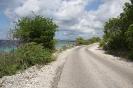 Twizy Tours Roadrunner-Bonaire_4